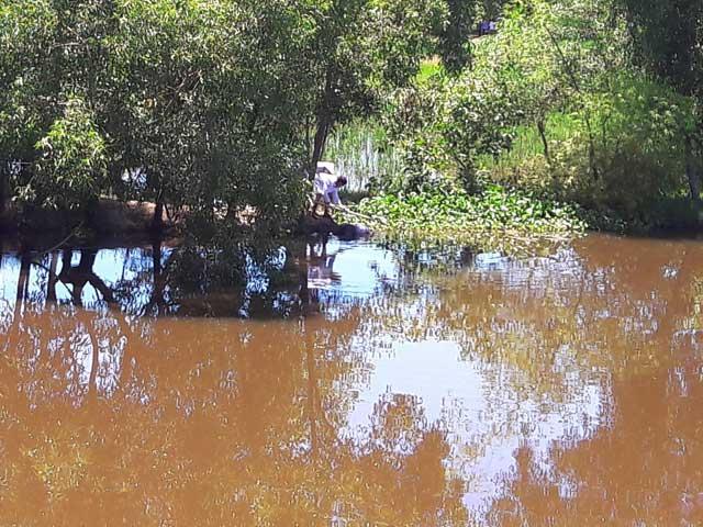 Câu cá, phát hiện thi thể trôi trên sông - 1