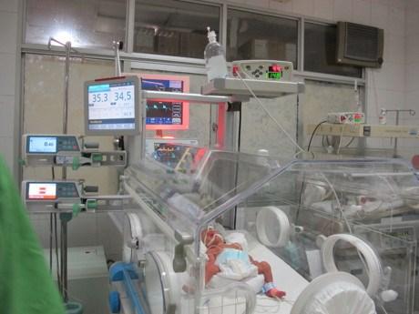 Sau 1 tháng chào đời, sức khỏe bé Trần Gấu tiến triển tốt - 1
