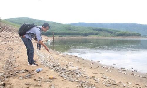 Cá chết hàng loạt, phủ trắng hồ ở Quảng Nam - 2
