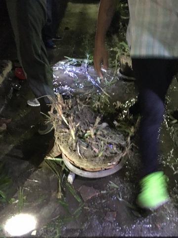 Thái Lan hứng chịu 11 vụ đánh bom liên tiếp trong 24 giờ - 4