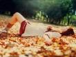 Thơ tình: Em khi mùa thu tới