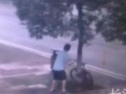 Phi thường - kỳ quặc - Video: Khóa xe đạp vào cây, trộm cưa đổ cả cây để lấy xe