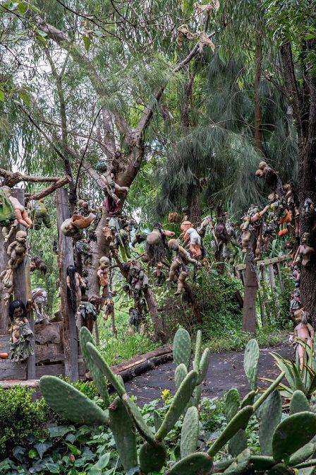 Rùng rợn hòn đảo treo cổ hàng nghìn búp bê - 1