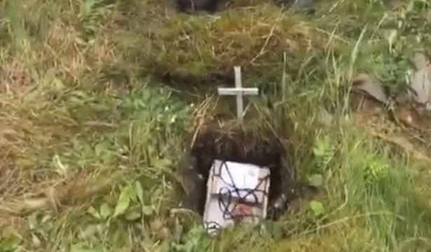 Anh: Làm đám tang cho chim lạ, 6 trai trẻ gây sốt mạng - 2