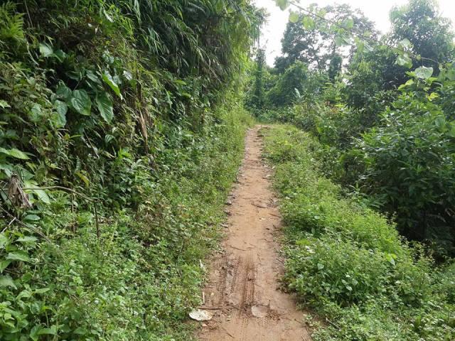 Đội mưa, vượt lũ truy tìm kẻ thảm sát ở Lào Cai - 2