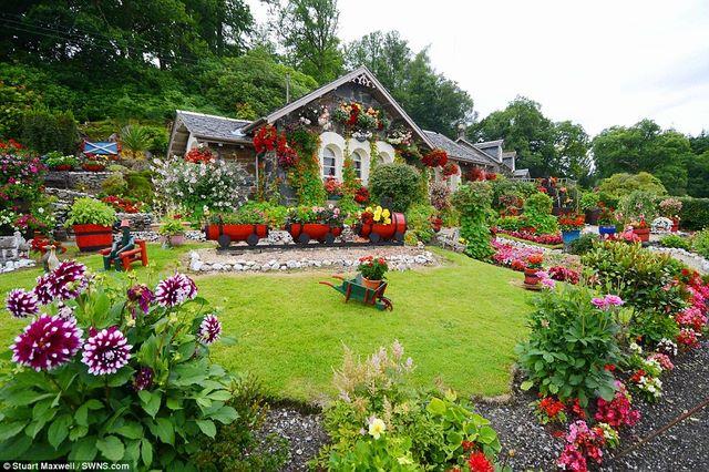 Biến vườn nhà thành điểm du lịch nổi tiếng ở Scotland - 1