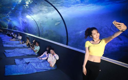 """Trào lưu """"ngủ dưới đáy biển"""" đã có mặt tại Việt Nam - 4"""