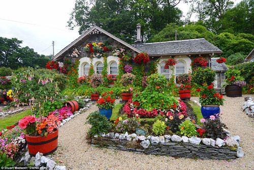Biến vườn nhà thành điểm du lịch nổi tiếng ở Scotland - 7
