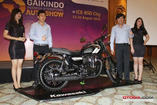 Ra mắt Kawasaki W800 giá 423,5 triệu đồng - 4