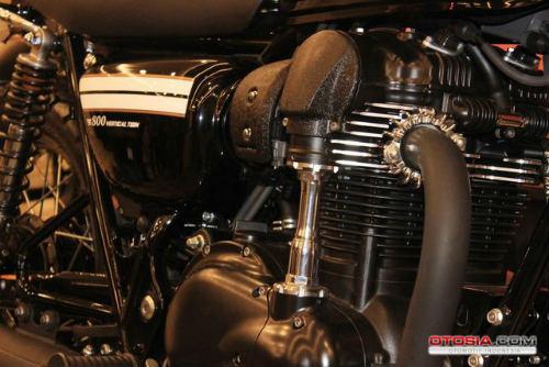 Ra mắt Kawasaki W800 giá 423,5 triệu đồng - 9