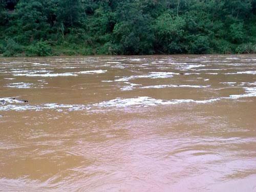 7 người chết, 4 người bị thương vì mưa lũ, sạt lở đất - 1