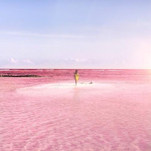 """Vẻ đẹp siêu thực của hồ nước hồng có """"1-0-2"""" ở Mexico - 5"""