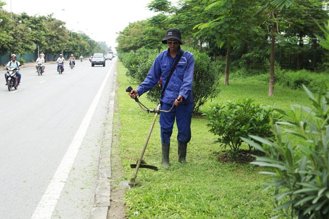 Cắt cỏ đại lộ Thăng Long, công nhân được trả bao nhiêu? - 8