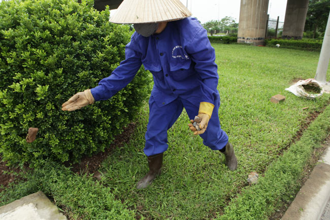 Cắt cỏ đại lộ Thăng Long, công nhân được trả bao nhiêu? - 5