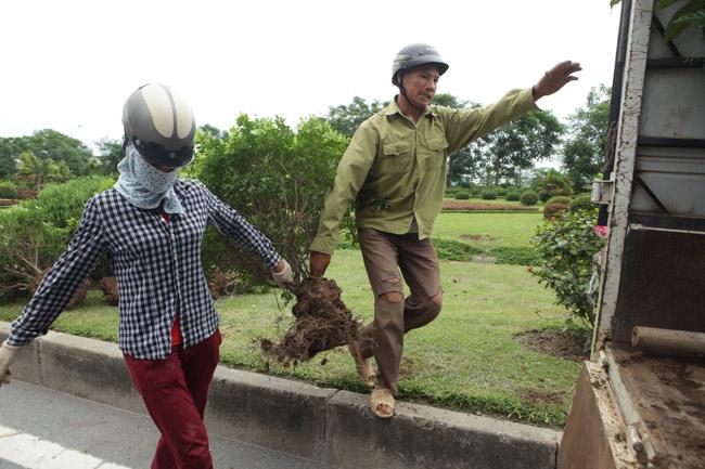 Cắt cỏ đại lộ Thăng Long, công nhân được trả bao nhiêu? - 9