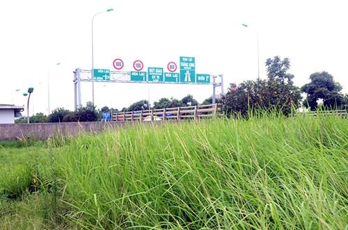 Chi 53 tỷ cắt cỏ tỉa cây, đại lộ Thăng Long vẫn như rừng - 2