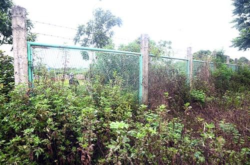 Chi 53 tỷ cắt cỏ tỉa cây, đại lộ Thăng Long vẫn như rừng - 6