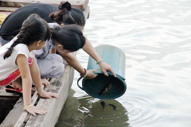 Cá vừa được phóng sinh xuống sông Sài Gòn đã bị tóm - 2