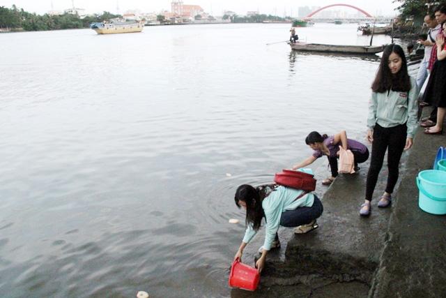 Cá vừa được phóng sinh xuống sông Sài Gòn đã bị tóm - 3