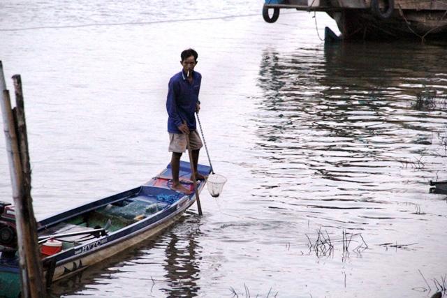 Cá vừa được phóng sinh xuống sông Sài Gòn đã bị tóm - 6