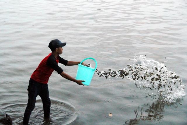 Cá vừa được phóng sinh xuống sông Sài Gòn đã bị tóm - 11