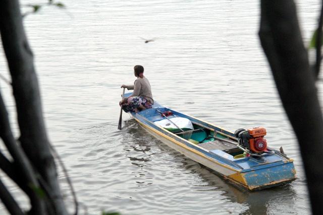 Cá vừa được phóng sinh xuống sông Sài Gòn đã bị tóm - 10