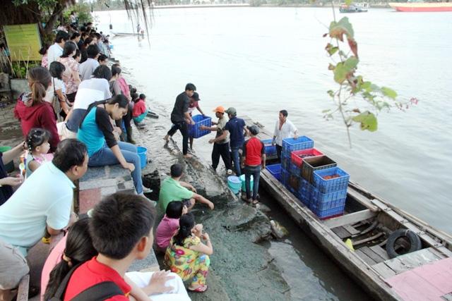 Cá vừa được phóng sinh xuống sông Sài Gòn đã bị tóm - 12