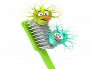 Sức khỏe đời sống - Sự thật đáng sợ về chiếc bàn chải đánh răng của bạn