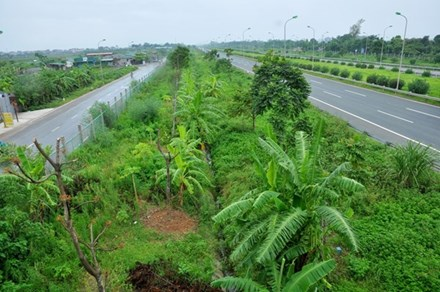 Hà Nội bỏ hàng loạt hạng mục chi phí 'cắt cỏ, tỉa cây' - 1