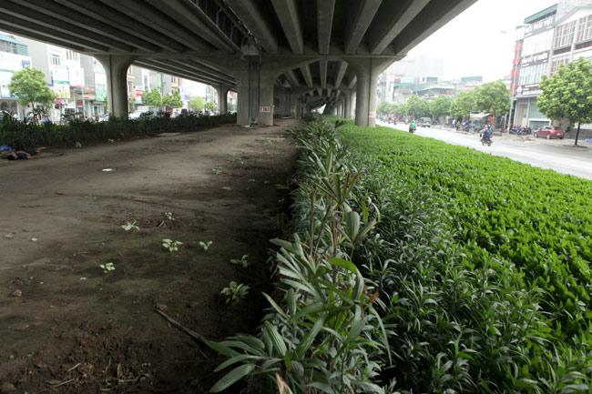 """Những con đường có phí """"cắt cỏ"""" hàng chục tỷ đồng ở Thủ đô - 9"""