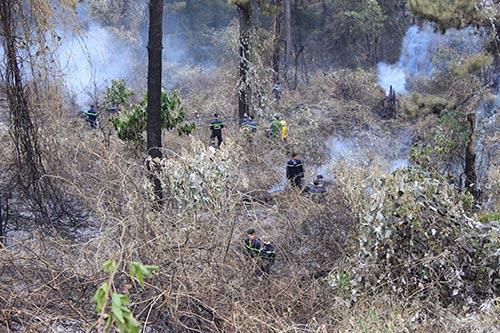 Cháy lớn ở rừng Hải Vân, hơn 500 người tham gia dập lửa - 2