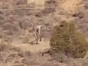 Phi thường - kỳ quặc - Sinh vật giống người bí ẩn đi giữa sa mạc vắng