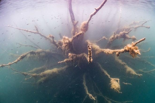 Bí ẩn nhà tù chìm trong biển nước - 8