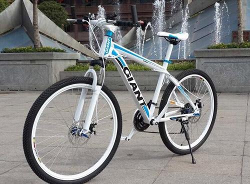 Cách phân biệt xe đạp GIANT chính hãng mà người tiêu dùng cần biết - 2