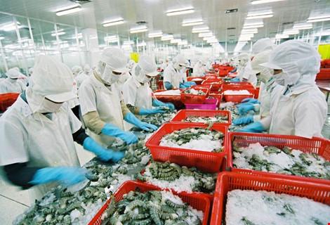 Tôm, cá Việt kiến nghị gỡ khó xuất khẩu hàng sang TQ - 1