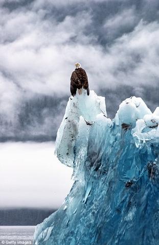 Ngắm núi băng 3 vạn năm tuổi cổ nhất thế giới - 7