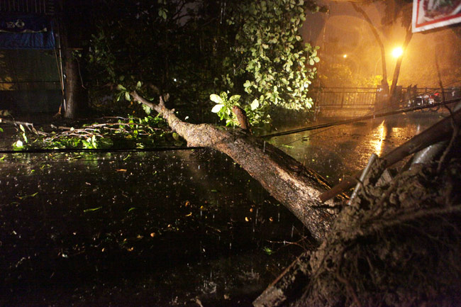 Hà Nội: Mưa dữ dội, ngập lụt, cây đổ vì bão Thần Sét - 5