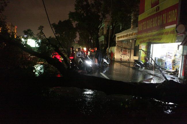 Hà Nội: Mưa dữ dội, ngập lụt, cây đổ vì bão Thần Sét - 3