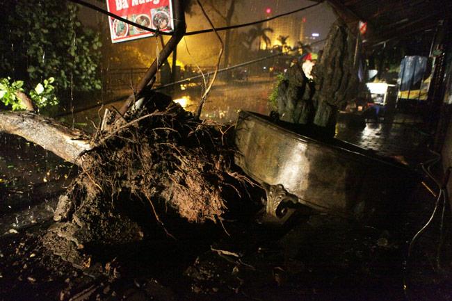 Hà Nội: Mưa dữ dội, ngập lụt, cây đổ vì bão Thần Sét - 2
