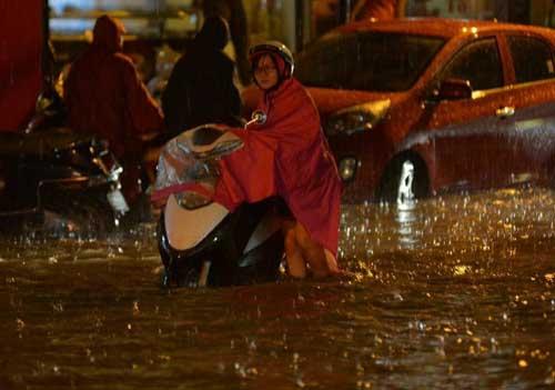 Hà Nội: Mưa dữ dội, ngập lụt, cây đổ vì bão Thần Sét - 12
