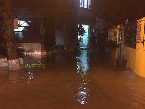 Hà Nội: Mưa dữ dội, ngập lụt, cây đổ vì bão Thần Sét - 13