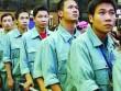 Hàn Quốc có thể dừng tiếp nhận lao động Việt Nam
