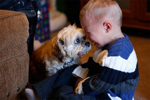 Hãy cười như lũ trẻ vui vẻ bên chó mèo - 3