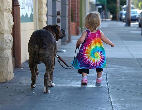 Hãy cười như lũ trẻ vui vẻ bên chó mèo - 5