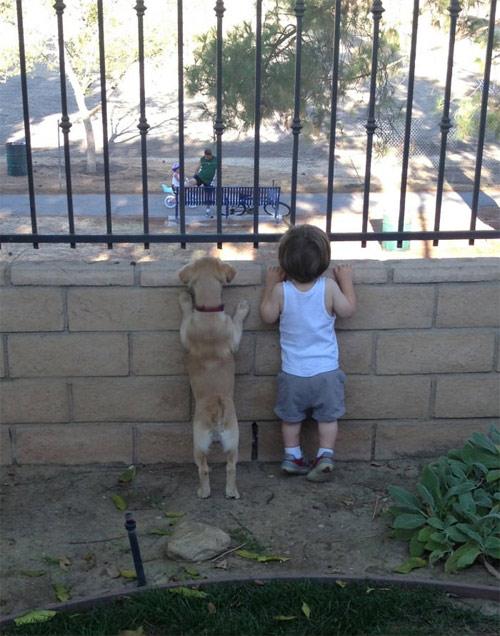 Hãy cười như lũ trẻ vui vẻ bên chó mèo - 6