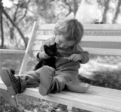 Hãy cười như lũ trẻ vui vẻ bên chó mèo - 7