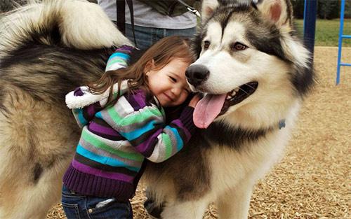 Hãy cười như lũ trẻ vui vẻ bên chó mèo - 8
