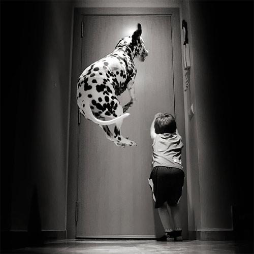 Hãy cười như lũ trẻ vui vẻ bên chó mèo - 11