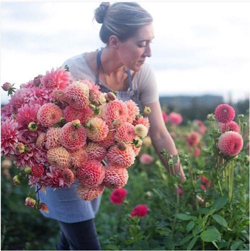 Cô gái trẻ chứng minh bán hoa là nghề tuyệt vời nhất - 13