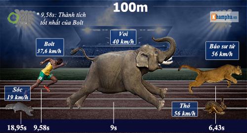 Huyền thoại Usain Bolt: Vĩ đại & ngạo nghễ (Infographic) - 4